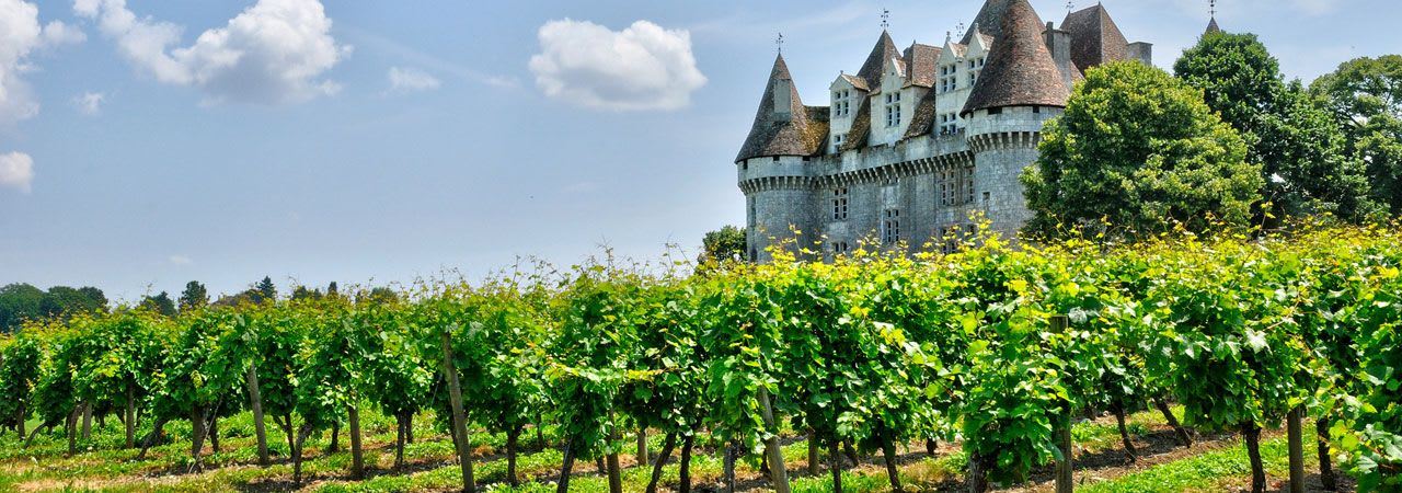 French Vineyard Properties