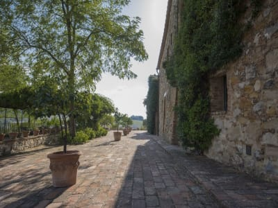 4 bedroom villa for sale, Trequanda, Siena, Chianti