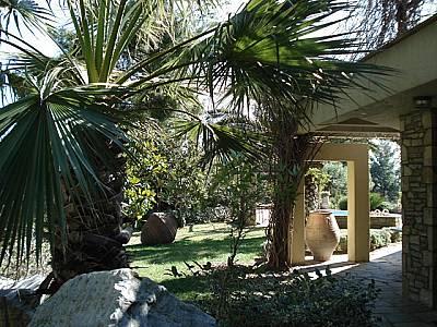 Image 2 | Kassandra Villa For Sale 123735