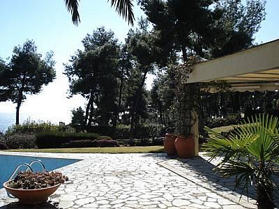 Image 4 | Kassandra Villa For Sale 123735