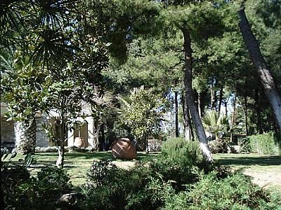 Image 7 | Kassandra Villa For Sale 123735