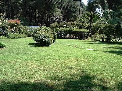 Image 6 | Villa For Sale Kassandra 123757