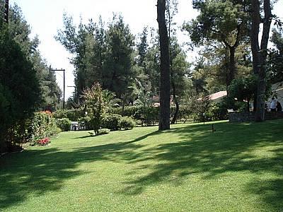 Image 7 | Villa For Sale Kassandra 123757