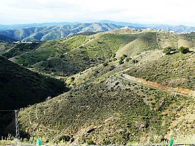 Image 5 | 4 bedroom farmhouse for sale with 3 hectares of land, Canillas de Aceituno, Malaga Costa del Sol, Andalucia 129709
