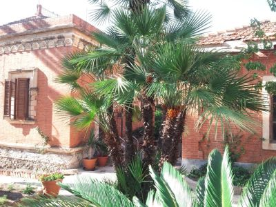 Image 24 | 2 bedroom house for sale with 0.3 hectares of land, Messina, Sicily 184019