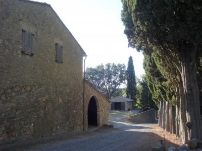 Image 1   Fabulous estate/hamlet for sale in Tuscany with 170 hectares of land 194338