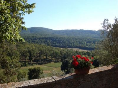 Image 3   Fabulous estate/hamlet for sale in Tuscany with 170 hectares of land 194338