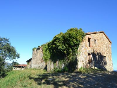 Image 2 | Farmhouse for sale with 200 hectares of land, Allerona, Terni, Umbria 195267