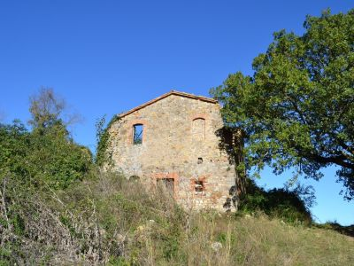 Image 6 | Farmhouse for sale with 200 hectares of land, Allerona, Terni, Umbria 195267