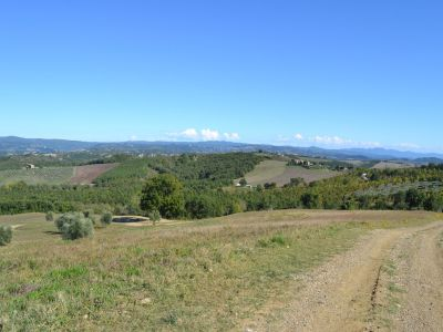Image 7 | Farmhouse for sale with 200 hectares of land, Allerona, Terni, Umbria 195267