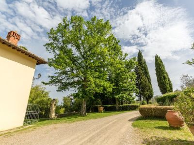 Image 21 | 7 bedroom hotel for sale with 60 hectares of land, Chianti, Florence, Chianti 195317