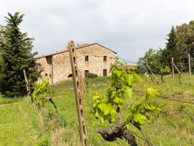 Image 29 | 7 bedroom hotel for sale with 60 hectares of land, Chianti, Florence, Chianti 195317