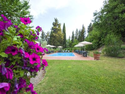 Image 35   Fabulous Tuscan estate for sale with three buildings, 13 bedrooms in total 198742