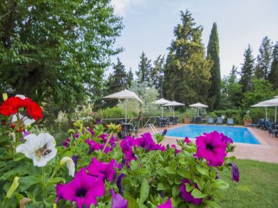 Image 8   Fabulous Tuscan estate for sale with three buildings, 13 bedrooms in total 198742