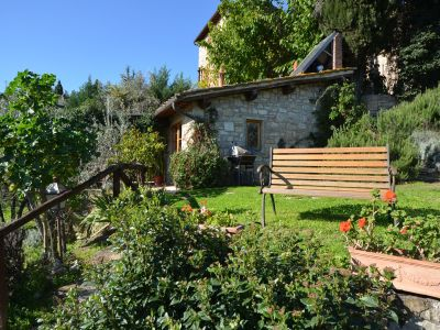 Image 11   Two lovely country properties with income for sale in Tuscany 198748