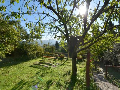 Image 7   Two lovely country properties with income for sale in Tuscany 198748