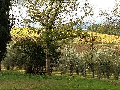 Image 6 | 10 bedroom manor house for sale with 3 hectares of land, Chiusi, Siena, Chianti 200150