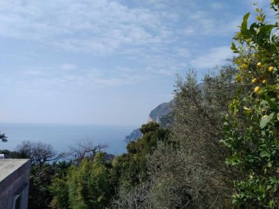 Image 4 | 5 bedroom villa for sale with 300m2 of land, Capri, Italian Islands 200981