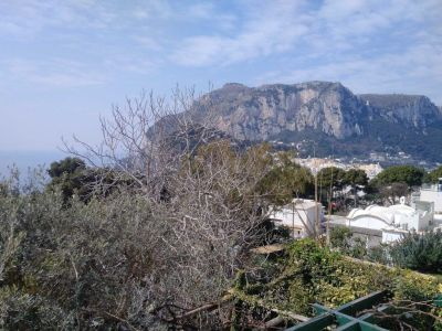 Image 7 | 5 bedroom villa for sale with 300m2 of land, Capri, Italian Islands 200981