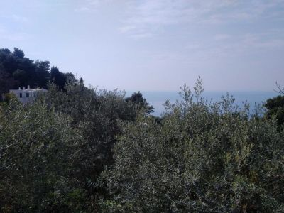 Image 8 | 5 bedroom villa for sale with 300m2 of land, Capri, Italian Islands 200981