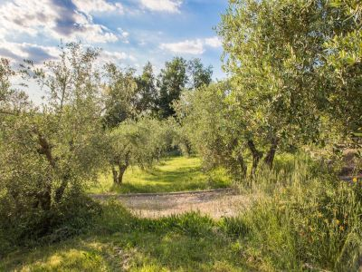 Image 26 | 5 bedroom villa for sale with 0.4 hectares of land, Florence, Chianti 201456