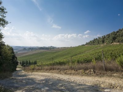 Image 6 | 4 bedroom villa for sale with 110 hectares of land, Trequanda, Siena, Chianti 202371
