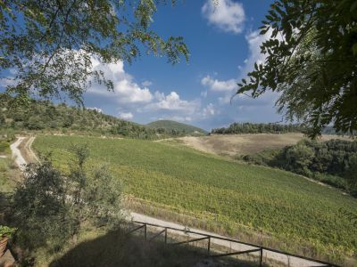 Image 7 | 4 bedroom villa for sale with 110 hectares of land, Trequanda, Siena, Chianti 202371