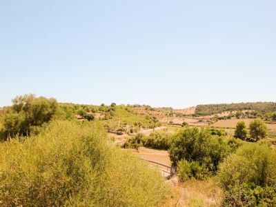 Image 6   Manor House for sale with 50 hectares of land, Lloret, Pina, Central Mallorca, Mallorca 203053