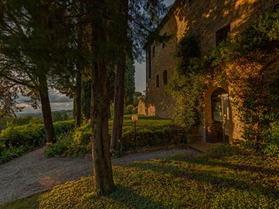 Image 7 | Tuscan Wine Estate for sale with Agriturismo and Pool and 29 hectares of land 203191