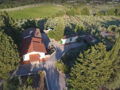 Image 21   Historic Farmstead with Productive Vinyard and Olive Groves for sale in Tuscany with 18 hectares 203334