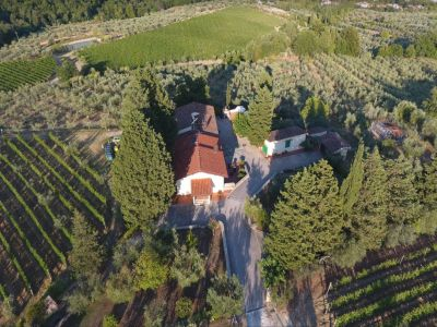 Image 22   Historic Farmstead with Productive Vinyard and Olive Groves for sale in Tuscany with 18 hectares 203334