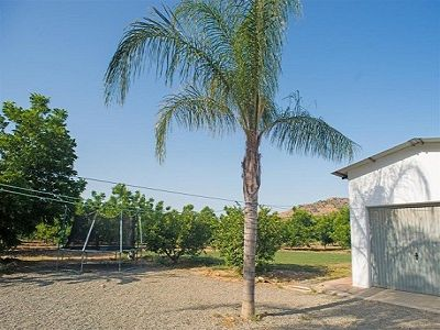 Image 29 | 8 bedroom farmhouse for sale with 1.9 hectares of land, Alora, Malaga Costa del Sol, Andalucia 204287