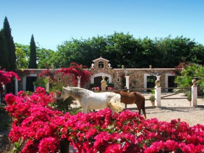 Image 25 | 5 bedroom villa for sale with 4 hectares of land, Binissalem, Central Mallorca, Mallorca 204356