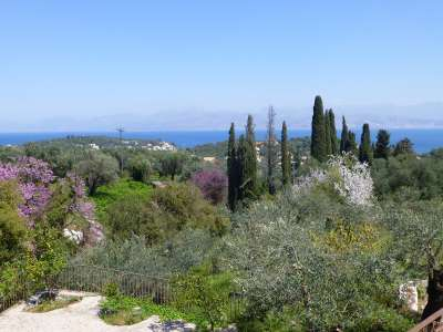 Image 6 | 5 bedroom villa for sale with 0.4 hectares of land, Kassiopi, Corfu, Ionian Islands 205693