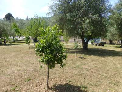 Image 9   5 bedroom villa for sale with 0.4 hectares of land, Avlaki, Kassiopi, Corfu, Ionian Islands 205798