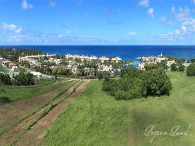 Image 8 | Plot of land for sale with 9.66 hectares of land, Heywoods, Saint Peter 206283