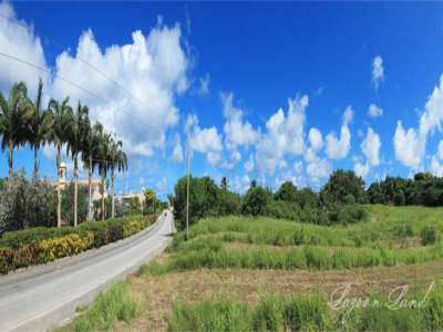Image 9 | Plot of land for sale with 9.66 hectares of land, Heywoods, Saint Peter 206283