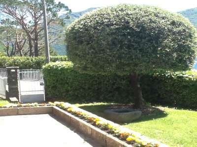 Image 18 | 4 bedroom villa for sale with 800m2 of land, Ossuccio, Como, Lake Como 208177