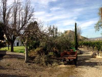 Image 15 | 5 bedroom villa for sale with 2.01 hectares of land, Mojacar, Almeria Costa Almeria, Andalucia 209009