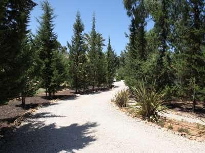 Image 2 | 4 bedroom villa for sale with 0.3 hectares of land, Alvor, Western Algarve, Algarve 209272