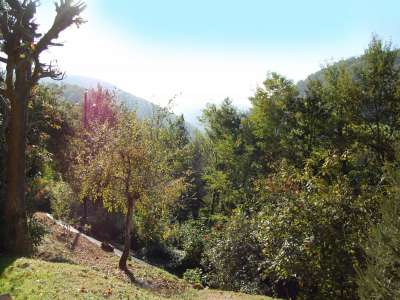 Image 15 | 4 bedroom house for sale with 0.7 hectares of land, Rimont, Ariege 9, Gascony 211775