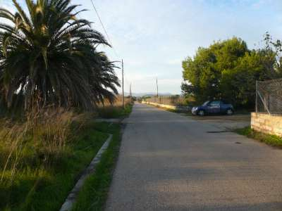 Image 2 | Plot of land for sale with 2.1 hectares of land, Muro, Central Mallorca, Mallorca 213406