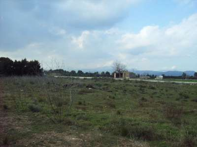 Image 3 | Plot of land for sale with 2.1 hectares of land, Muro, Central Mallorca, Mallorca 213406