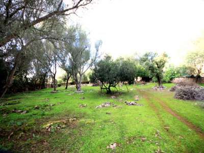 Image 6 | Plot of land for sale with 2 hectares of land, Costitx, Central Mallorca, Mallorca 214109