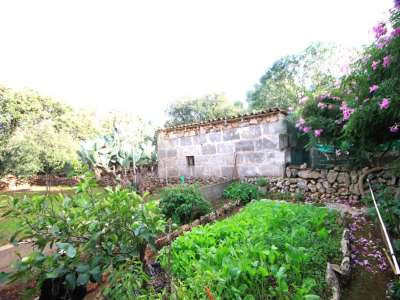 Image 8 | Plot of land for sale with 2 hectares of land, Costitx, Central Mallorca, Mallorca 214109