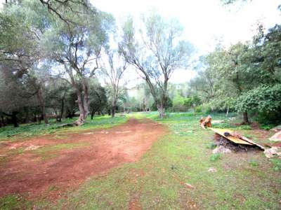 Image 9 | Plot of land for sale with 2 hectares of land, Costitx, Central Mallorca, Mallorca 214109