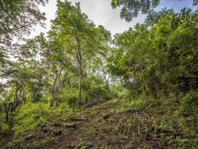 Image 10 | Plot of land for sale with 14 hectares of land, Playa Negra, Guanacaste 214635
