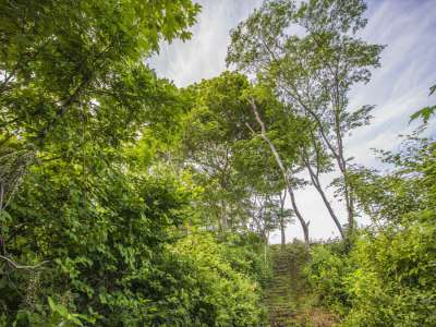 Image 11 | Plot of land for sale with 14 hectares of land, Playa Negra, Guanacaste 214635