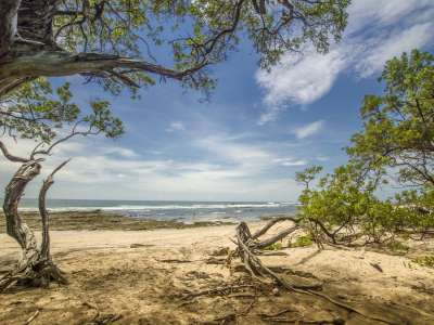 Image 4 | Plot of land for sale with 14 hectares of land, Playa Negra, Guanacaste 214635