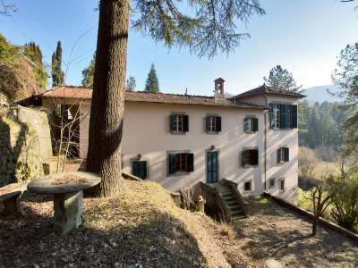 Image 15 | 7 bedroom villa for sale with 3 hectares of land, Lucca, Tuscany 215293
